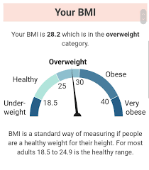 Nhs Bmi Chart For Adults
