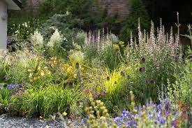 Small Picture Twig Garden Design Markcastroco