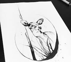 Doe Sketch Drawing By Block Tattoo Photo 17794