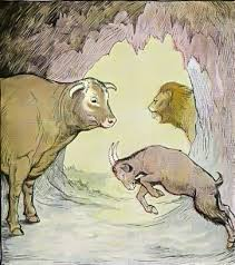 the bull and the goat fables of aesop