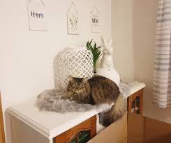 Wanddekoration Bilder Ideen Couch
