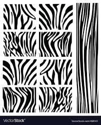 Zebra Patterns Mesmerizing Zebra Patterns Thevillasco