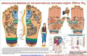Sujok Therapy Points Chart Google Search Acupressure