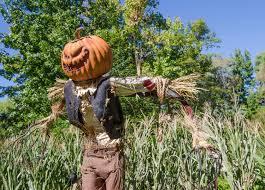 y scarecrows garden scarecrow cute bents garden centre