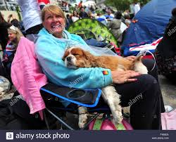 Ann Daley of Oxford sits with her dog Camilla Daley-Quegood in ...