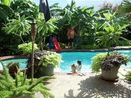 Small Picture Best 25 Tropical backyard landscaping ideas on Pinterest