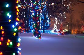 Birmingham Mi Christmas Tree Lighting Wild Lights At The Detroit Zoo Birmingham Mi Patch