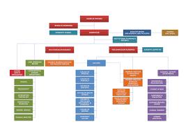 Organization Chart Gulf Medical University