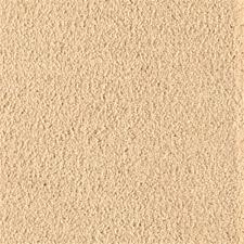 tan carpet floor. American Dream Tan Carpet Floor