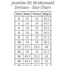 Nwt B2 Jasmine Bridesmaid Dress 10 Iron Nwt