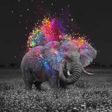 Cute Colorful Elephant Wallpapers - Top ...