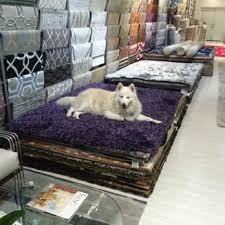 photo of modern rugs la west hollywood ca united states toby