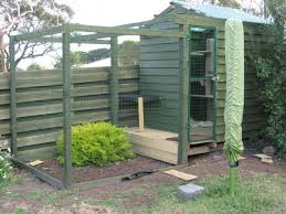 modern outdoor cat enclosure diy and dog lover connected to house kit attached plan uk canada