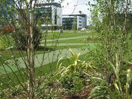 Small Picture rennie design Golf Course Designer Glasgow Golf Architecture