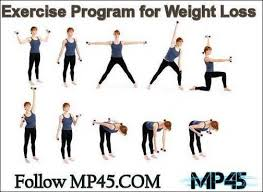 pictures of exercise program software free