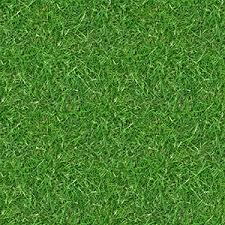 grass field texture. Related Grass Field Texture