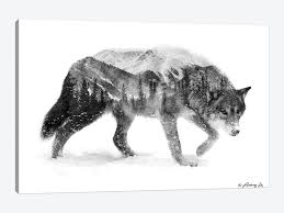 If you're planning on completing the drawing in ink, keep the balance of black and white in mind. Black White Wolf I Canvas Artwork By Andreas Lie Icanvas