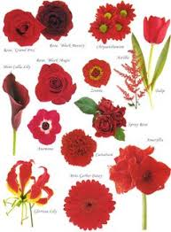 types of flowers in bouquets. flower names by color types of flowers in bouquets f