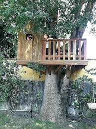 free treehouse plans free plans crooked tree house plans elegant small tree house plans free platform