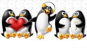 penguin love wallpaper. Unique Love Penguins In Love And Penguin Wallpaper L