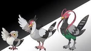 Pidove Pokemon Go How To Catch