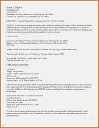 Veteran Resume Template Salary History Template Hourly Beautiful 100 Veteran Resume Examples 67