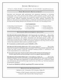 Awesome Application Development Manager Sample Resume Resume Sample