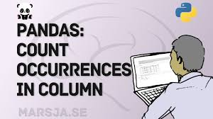 pandas count occurrences in column i