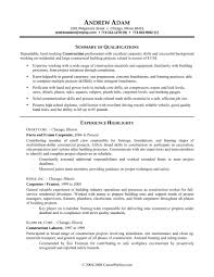 Resume Formats For Professionals