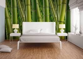 Fototapete Bambus Grün Dd106484
