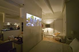 furniture to separate rooms. a movie projector screen is an easy way to separate studio apartment furniture rooms