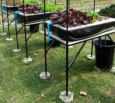 ebb flow flood and drain hydroponic system