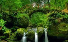 top ten hd natural scenery wallpaper