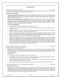 Perfect Best Sales Executive Resumes For Sales Resume Template Word ...