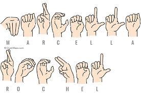 Marcella Rochel - Public Records