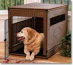 dog crates furniture style. dog crate vari kennel plastic wicker crates furniture style s