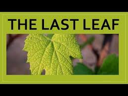 the last leaf cl 9 english moments