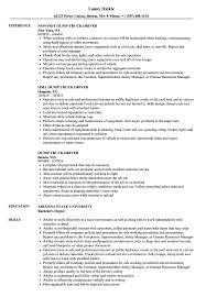 Cv For Driver Job Dump Truck Driver Resume Samples Velvet Jobs