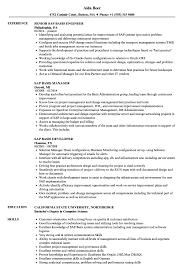 Sap Basis Resume Samples Velvet Jobs