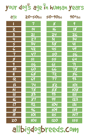 Dog Age Chart By Weight All Big Dog Breeds Dog Age Chart All Big Dog Breeds