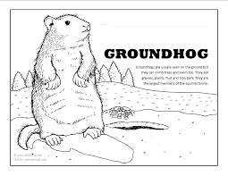 Small Picture Groundhog Coloring Page