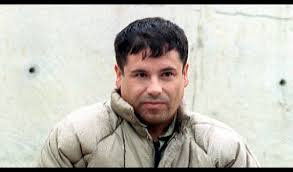 Joaquin 'El Chapo' Guzman: Most-wanted drug lord suspected dead in shootout  (VIDEO)