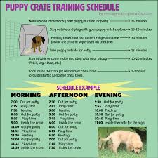 Puppy House Training Chart Free Printable Puppy Crate Training Schedule The Best