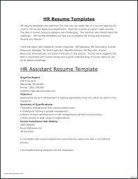 How To Write An Entry Level Resume Best Free Entry Level Resume Templates For Word Packed With Example Of