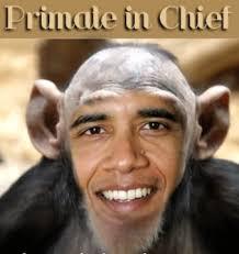 Image result for obama racist images