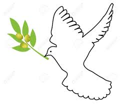 vector dove with olive branch stock vector 9637236