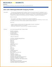 Company Fact Sheet Sample Company Information Template Business Plan Client Profile Template