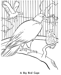 zoo cage coloring page. Perfect Coloring Zoo Birds Coloring Page  Aviary Bird Cage Throughout Cage Coloring Page