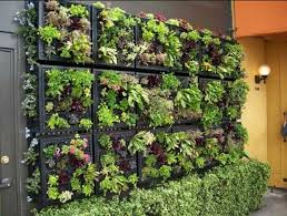 Vertical Garden Design Adding Natural Look To House Exterior And Fascinating Exterior Garden Design