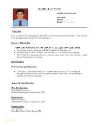 Standard Resume Sample And Multiple Page Resume Examples Examples Of